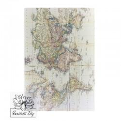 Coli A4 imprimate harti